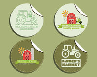 Set of unusual green organic labels - stickers for. Natural shop, farm products. Ecology theme. Eco design. Vector illustration royalty free illustration