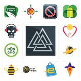 Set of valknut, travel, eshop, star wars, queen bee, gryphon, non gmo, breastfeeding, skull with headphone icons. Set Of 13 simple  icons such as valknut, travel Royalty Free Stock Photos