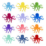 Set of varicolored watercolor hand drawn octopus Royalty Free Stock Photos