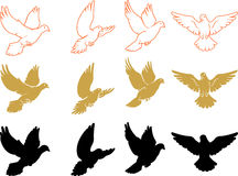 Set of Varied Doves Flying. Isolated doves silhouette and outline variations Royalty Free Stock Image