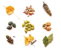Set of various autumn objects isolated on white stock photography