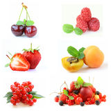 Set various berries Royalty Free Stock Photography