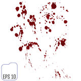Set of various blood or paint splatters,Vector Set of different Stock Image
