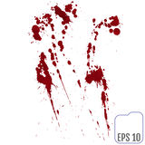 Set of various blood or paint splatters,Vector Set of different Stock Photography