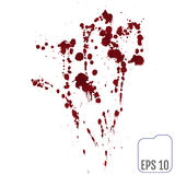 Set of various blood or paint splatters,Vector Set of different Royalty Free Stock Photography