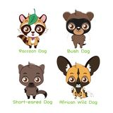 Set of various canine species. Set of various canine animal species royalty free illustration