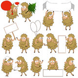 Set of various cartoon sheeps in various poses Royalty Free Stock Image