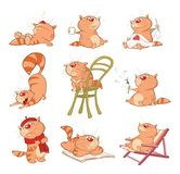 Set of  Cartoon Illustration. A Cute Cats for you Design. Comics stripes Stock Images