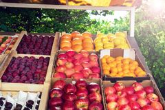 Set of various colorful fresh fruits in tray on street. Fresh fruits in market royalty free stock images