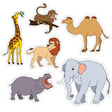 Set of various cute animals, stickers of safari animals. Vector illustration isolated on white.  Stock Photo
