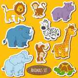 Set of various cute animals, vector stickers of safari animals. Color set of various cute animals, vector stickers of safari animals Royalty Free Stock Image