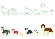 Set of various dogs walking in line Stock Photo
