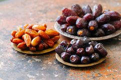 Set of various of dried dates or kurma. In a vintage plates Royalty Free Stock Images