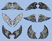 Set of the various fictional wings. Vector image of the different fantasy wings Stock Image