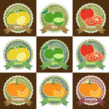Set of various fresh fruit and vegetable premium quality tag label badge sticker and logo design in vector Royalty Free Stock Photo