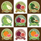 Set of various fresh fruits premium quality tag label badge stic. Ker and logo design, pear figs avocado and grapefruit Stock Images