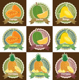 Set of various fresh tropical fruits premium quality tag label badge sticker and logo design in vector Royalty Free Stock Images