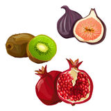 Set with various fruit Stock Photo