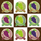 Set of various grape fruit tag label badge sticker and logo design in vector Royalty Free Stock Photography