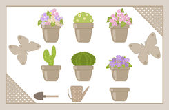 Set of various houseplants Royalty Free Stock Images