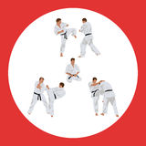 Set of images of karate Royalty Free Stock Photo