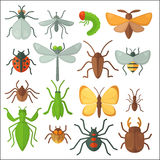 Set of various insects: butterfly, fly, beetle, dragonfly, spider, bee and ladybug. Stock Photography