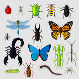 Set of Various Insects Design Flat Royalty Free Stock Image