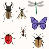 Set of various insects design flat. Butterfly, wasp, beetle, ladybug dragonfly ant royalty free illustration