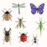 Set of various insects. Design flat. vector illustration Royalty Free Stock Photo