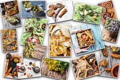 Set of various medical plants and herbs Stock Image