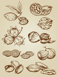 Set of various nuts royalty free stock photos
