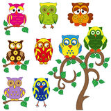 Set of various ornamental colorful owls Royalty Free Stock Photos