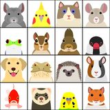 Set of various pet animals face. Set of various pet animal face in a square, with white background stock illustration
