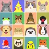Set of various pet animals face royalty free illustration