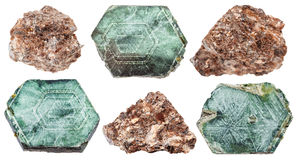 Set of various phlogopite minerals isolated Stock Images