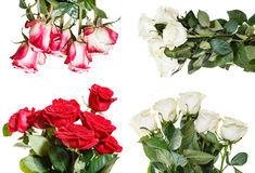 Set of various rose bouquets isolated on white Royalty Free Stock Photo