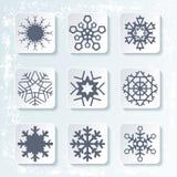 Set various snowflakes Royalty Free Stock Photo