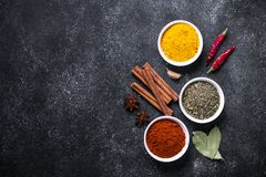 Set of Various spices  on black stone table. Stock Images