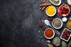 Set of Various spices  on black stone table. Royalty Free Stock Photo