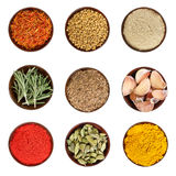 Set of various spices isolated on white. Stock Photos
