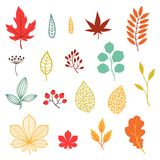 Set of various stylized autumn leaves and elements Royalty Free Stock Photography