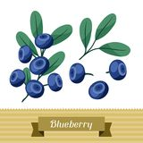 Set of various stylized blueberries. Stock Photography