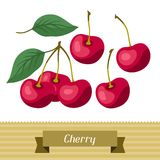 Set of various stylized cherries. Royalty Free Stock Photos