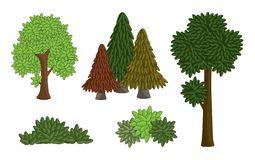 Set vector various tree isolated on white background. drawing cartoon shape of many leaf, bush and forest. royalty free illustration
