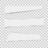 Set of various white torn note papers on transparent background. Vector illustration. Stock Images