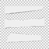 Set of various white torn note papers on transparent background. Vector illustration. Royalty Free Stock Photography