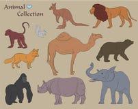 Set of Various Wild Animals Vector Illustration Stock Photography