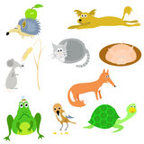 Set of vector animals Stock Photography