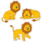 Set of vector animals (lions). Set of vector color animals (lions stock illustration