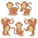 Set of vector animals (monkeys) Stock Images